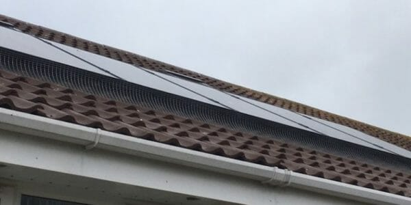 Solar Panel Pigeon Protection In Kent