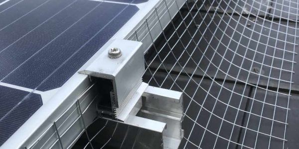How Do You Stop Pigeons From Going Under Your Solar Panels