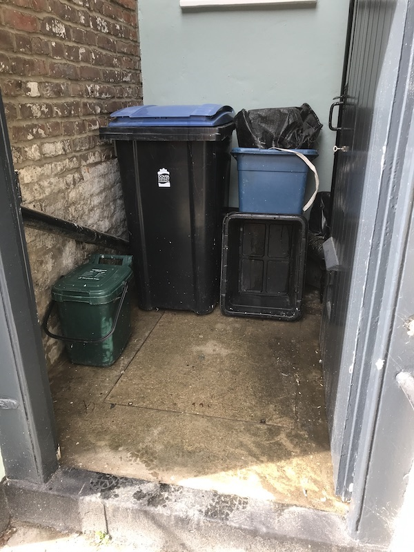 Pigeon waste removal Deal Kent